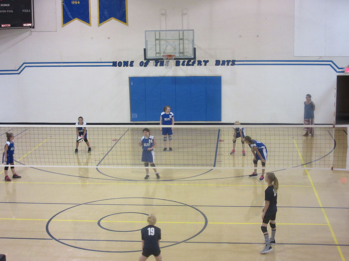 Bats Volleyball